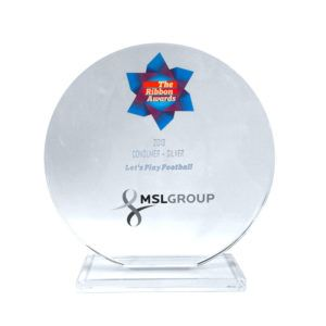 Silver Ribbon Award 2013